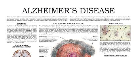 Alzheimer's Disease (II)