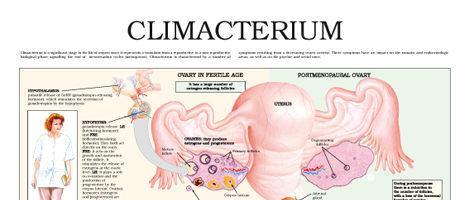 Climacterium