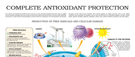 Complete antioxidant protection