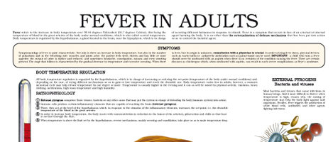 Fever in adults