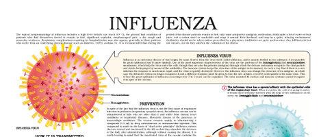 Influenza (II)