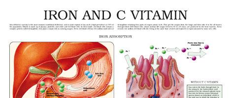 Iron and C vitamin