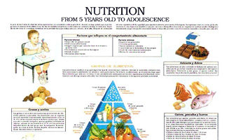 Nutrition, from 5 years old to adolescence