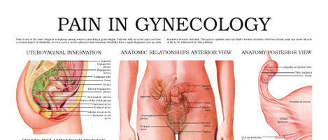 Pain in Gynecology