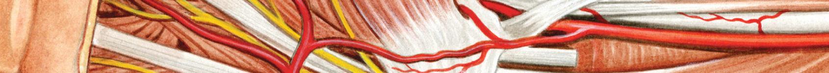 Anejo
