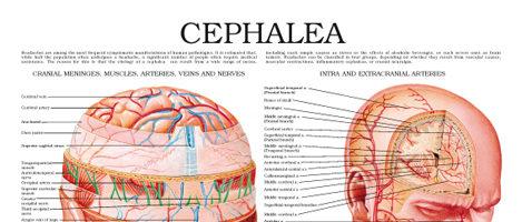 Cephalea