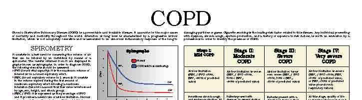 Chronic Obstructive Pulmonary Disease – COPD (II)
