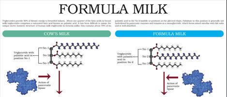Formula Milk