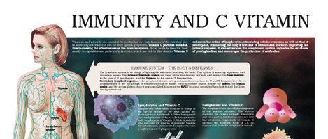 Immunity and C Vitamin