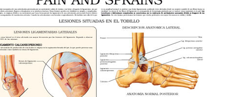Pain and sprains