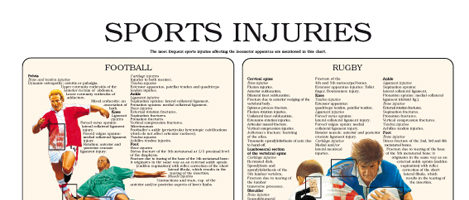 Sports injuries (II)