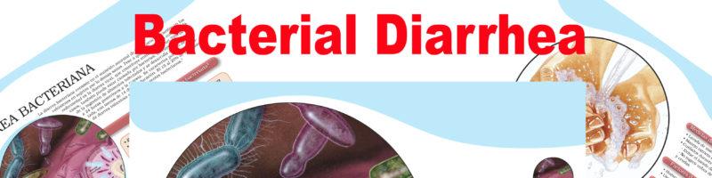 Bacterial Diarrhea