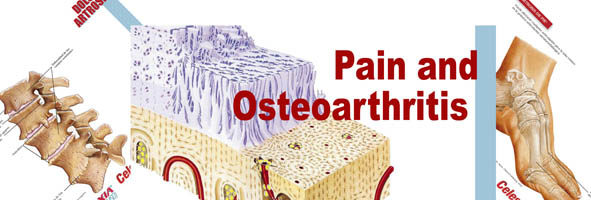 Pain and osteoarthritis